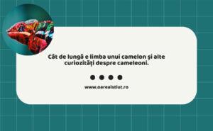Cât de lungă e limba unui camelon și alte curiozități despre cameleoni