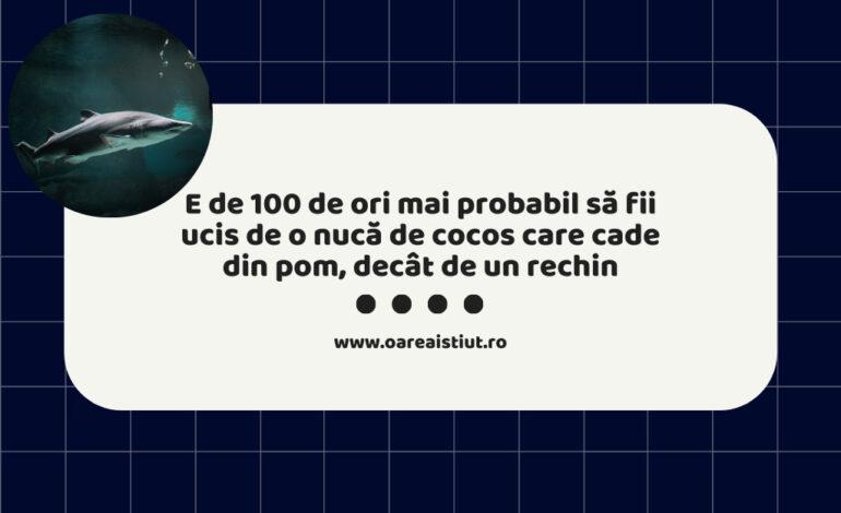 E de 100 de ori mai probabil să fii ucis de o nucă de cocos care cade din pom, decât de un rechin